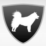 adopcje_malamutów_logo
