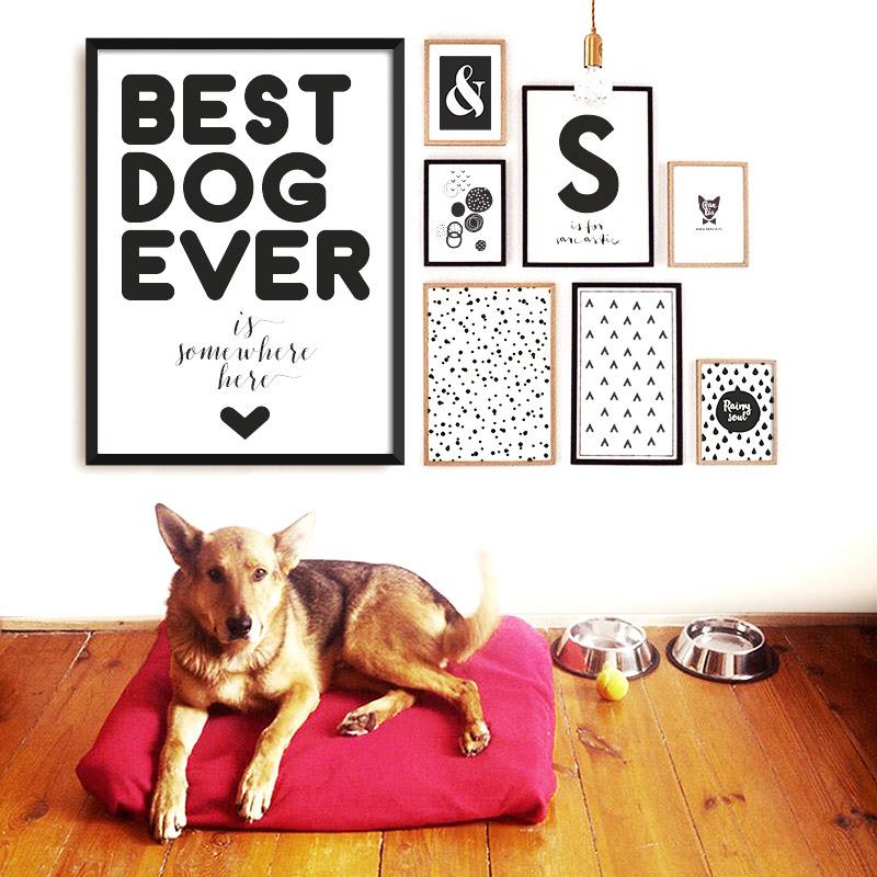 bestdogever